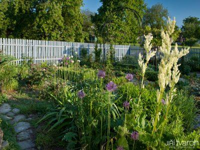 Přírodní zahrada Radonice
