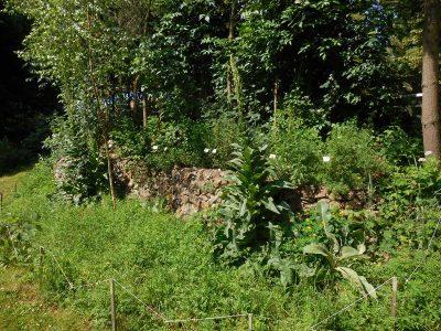 Bezinková zahrada