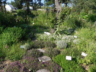 Zahrady Laurus