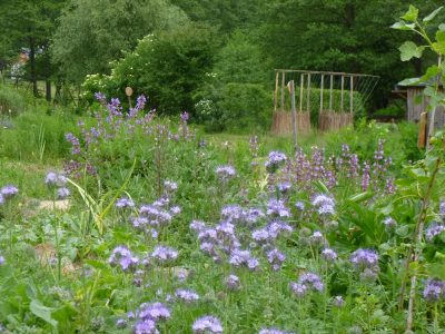Vlčihorská zahrada