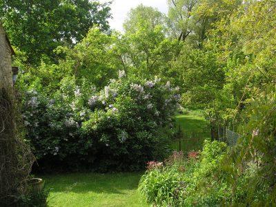 Zahrada v Chaloupkách