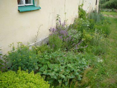 Zahrada chutí a vůní