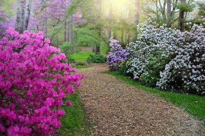 Víkend otevřených zahrad