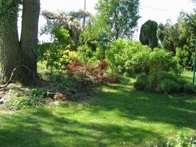 Sbírková zahrada Zdobín