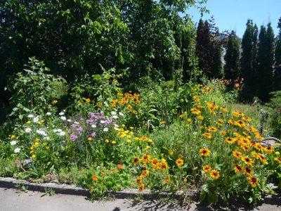 Veselá zahrada (nejen) pro děti
