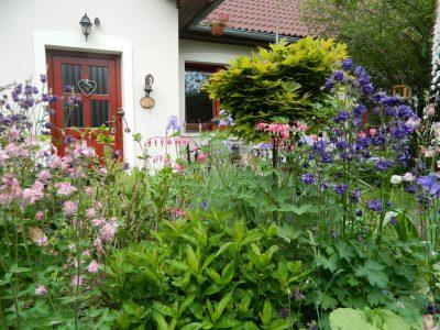 Zahrada u malíře