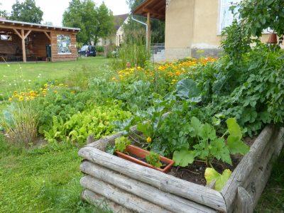 Zahrada u Krupské školy