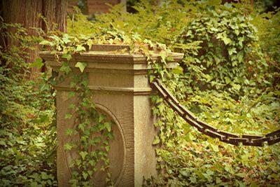 Seminář Ekologická péče o hřbitovy