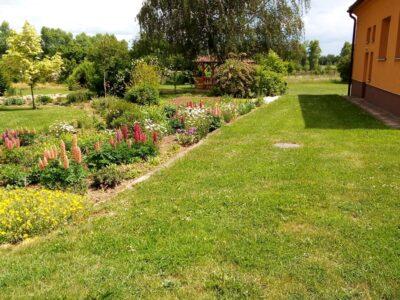 Zahrada u školy