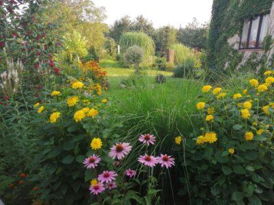 Zahrada U Bohouše