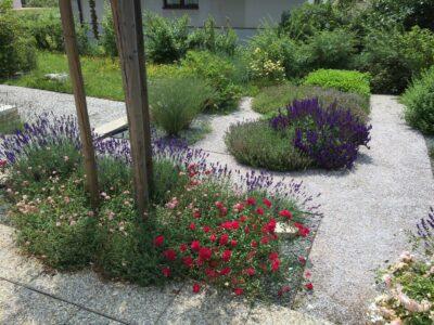 Bylinková zahrada na Větrníku